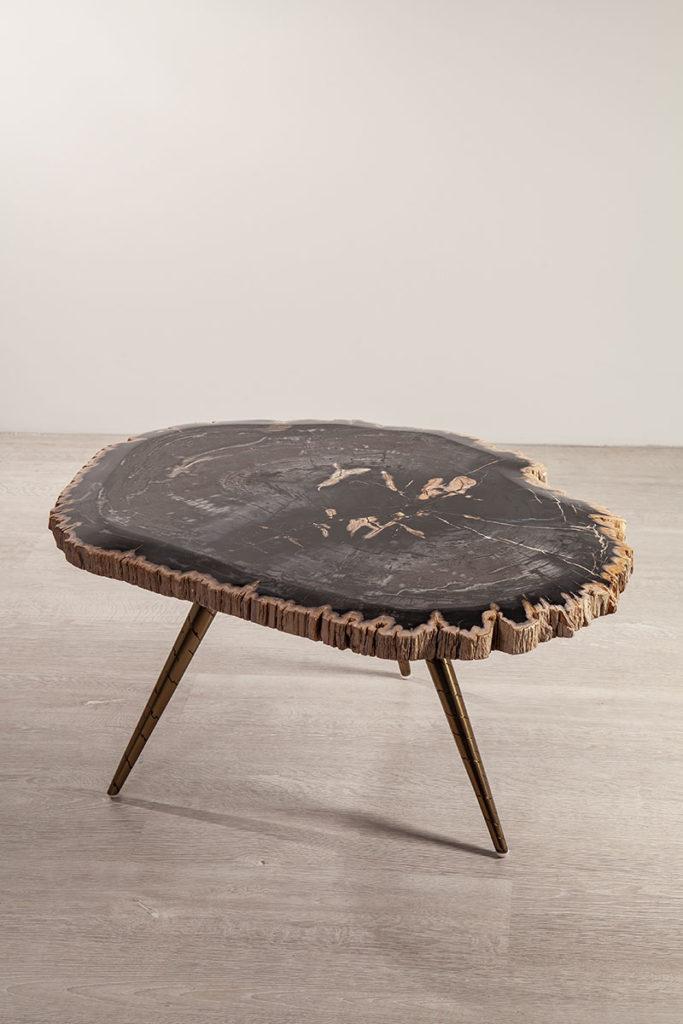 Tisch - Recyclingmöbel, versteinertes Holz